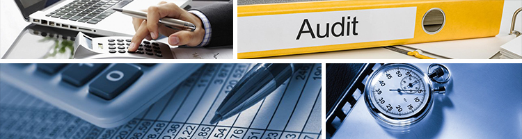 Auditor in Qatar | Auditing Services Doha